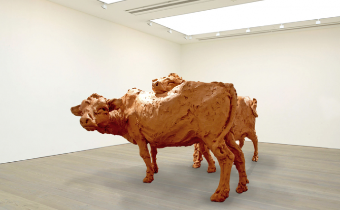 """Two cows"" (2013), Stephanie Quayle (Australie)<br />"