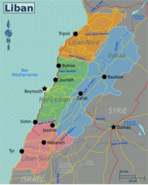 Carte du Liban 2010
